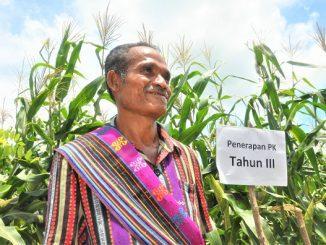Pertanian Konservasi Efektif Hadapi Perubahan Iklim Ekstrem