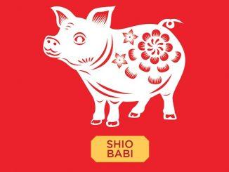 Mau Tahu Kenapa Shio Babi Ada di Urutan Terakhir dalam Zodiak Tionghoa? Ini 2 Alasannya