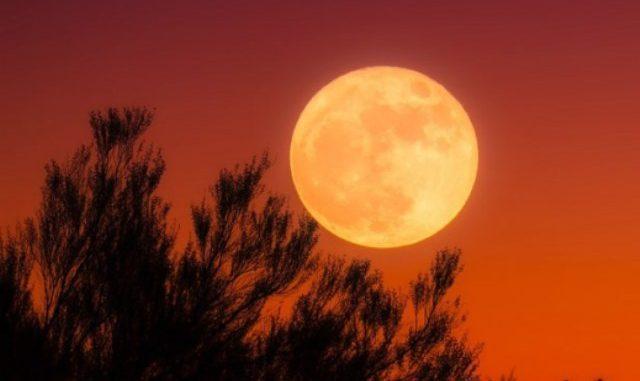 Fenomena Harvest Moon