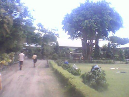 Halaman Seminari St. Maria Bunda Segala Bangsa Maumere