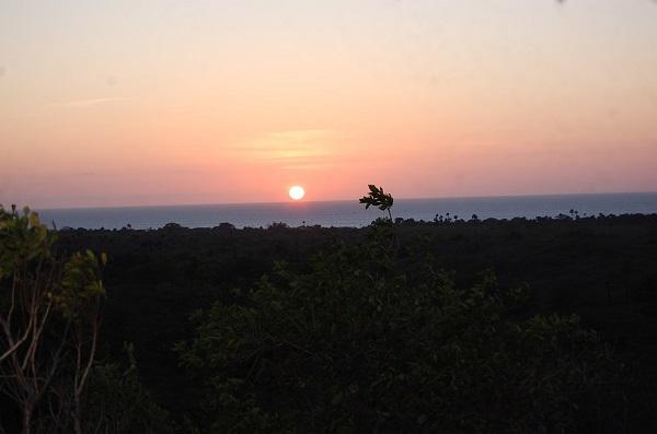 Pagi Merekah di Taman Nasional Baluran