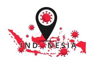 Ilustrasi: Penyebaran virus corona di Indonesia. (Ist.)
