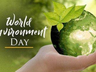 Ilustrasi: Hari Lingkungan Hidup Sedunia, 5 Juni. (Ist.)