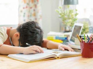 Ilustrasi anak yang sedang belajar di rumah. Kadangkala, anak butuh pengertian bahwa di rumah saja bukan bersantai (KalderaNews/Ist)
