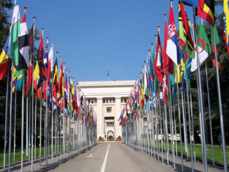 """Ilustrasi: Finalis pameran foto bertema """"Dunia yang Kita Inginkan"""" (The World We Want) untuk memperingati 75 tahun PBB. (KalderaNews.com/Ist.)"""