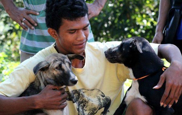 Hari hak asasi hewan diperingati setiap 15 Oktober. Kenali dan lindungi haknya. (KalderaNews/Ist)