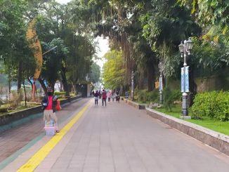 Jalur pedestrian Kebun Raya Bogor di pagi hari