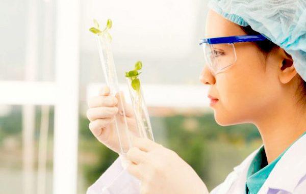 Ilustrasi: Tip pintar belajar ilmu biologi. (KalderaNews.com/Ist.)