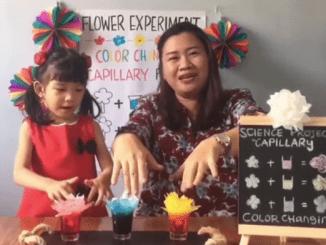 """Peserta PENABUR Kids Fest """"Indonesian Little Transformers"""": Lomba Proyek Anak Pembelajaran Abad 21 Tingkat KB, TK A, dan TK B"""