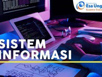 Program Studi Sistem Informasi (SI) Universitas Esa Unggul Citra Raya, Tangerang