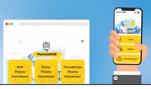 plasmahub, donor plasma konvalensen
