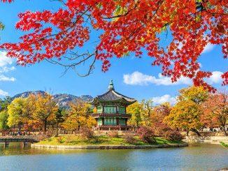Ilustrasi: Beasiswa Korea Selatan. (KalderaNews.com/Ist.)