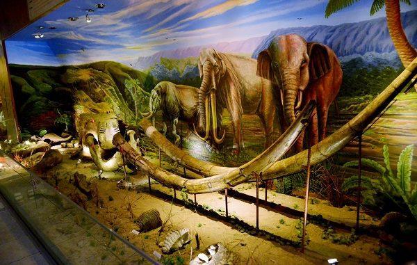 Museum Manusia Purba Sangiran di Sragen, Jawa Tengah,